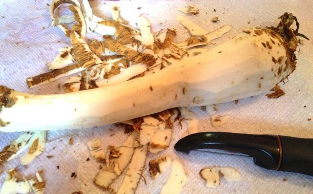 Peeled-Horseradish